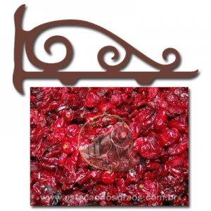 Cranberry Desidratada (Granel - Preço/100g)