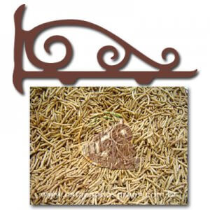 Allbran - Cereal Integral de Trigo e Milho (Granel - Preço/100g)