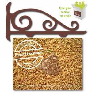 Alho Frito (Fracionado - Embalagem 100g)