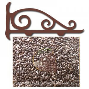 Semente de Chia (Granel - Preço/100g)